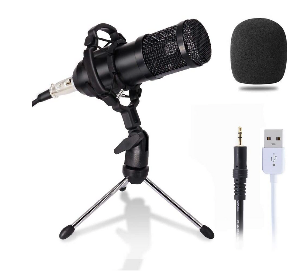 I'm assuming that you will have a separate microphone attached to your computer.