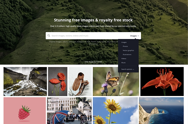 Home page of Pixabay