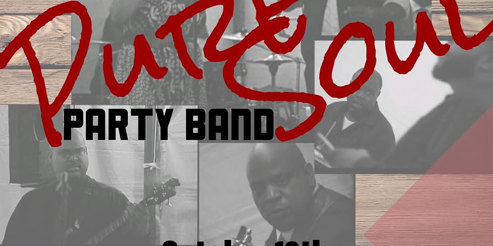 Pure Soul Party Band Live!