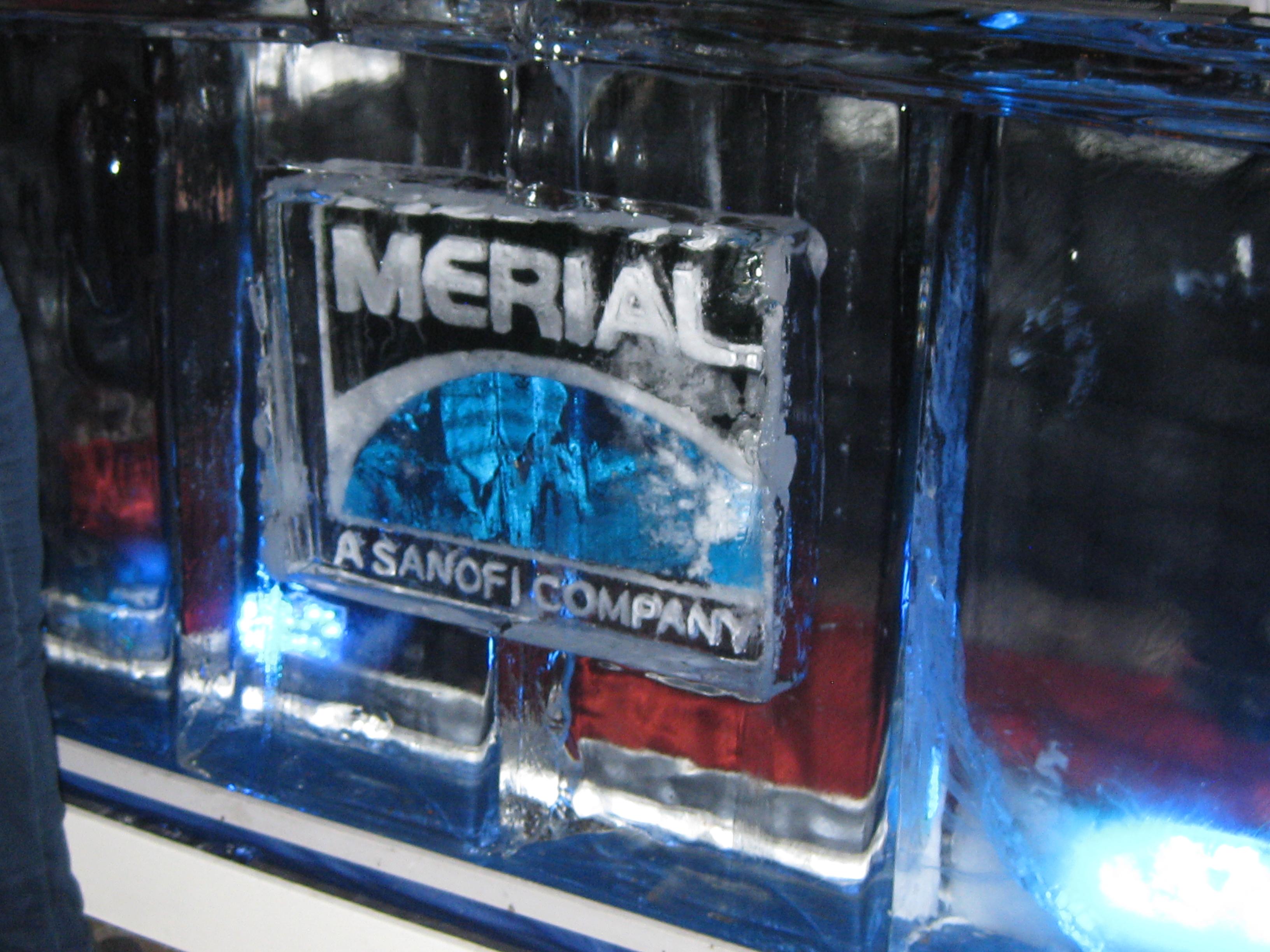 Logo on Ice Bar