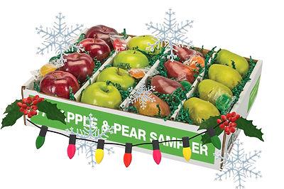 holiday fruit pic.jpg