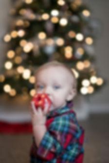 jeremy-bishop-christmas toy (LD).jpg