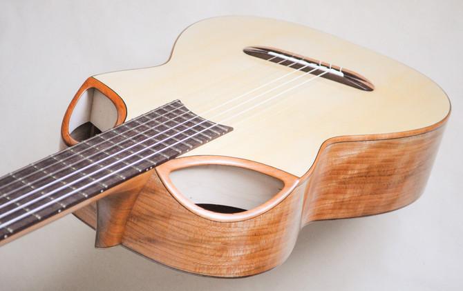 New Guitar!