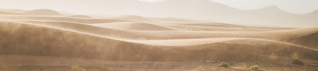 desert-1840453_1280.jpg