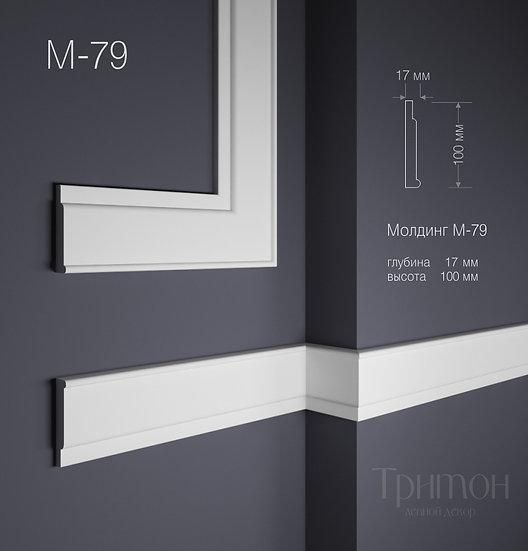 М 79 (100х17 мм)