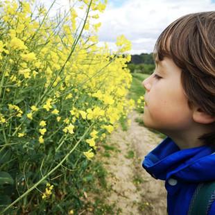Kids-Dagtocht: Poulseur > Comblain-la-Tour (9,1 km)