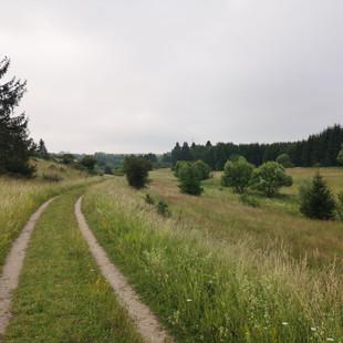 Eifelsteig - Dag 4 - Nettersheim > Leudersdorf