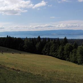 GR5 Traversée des Alpes - Dag 1 - Thonon-les-Bains > Le Petit Chesnay