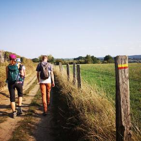 Dagtocht: Visé > Nessonvaux (32,2 km)