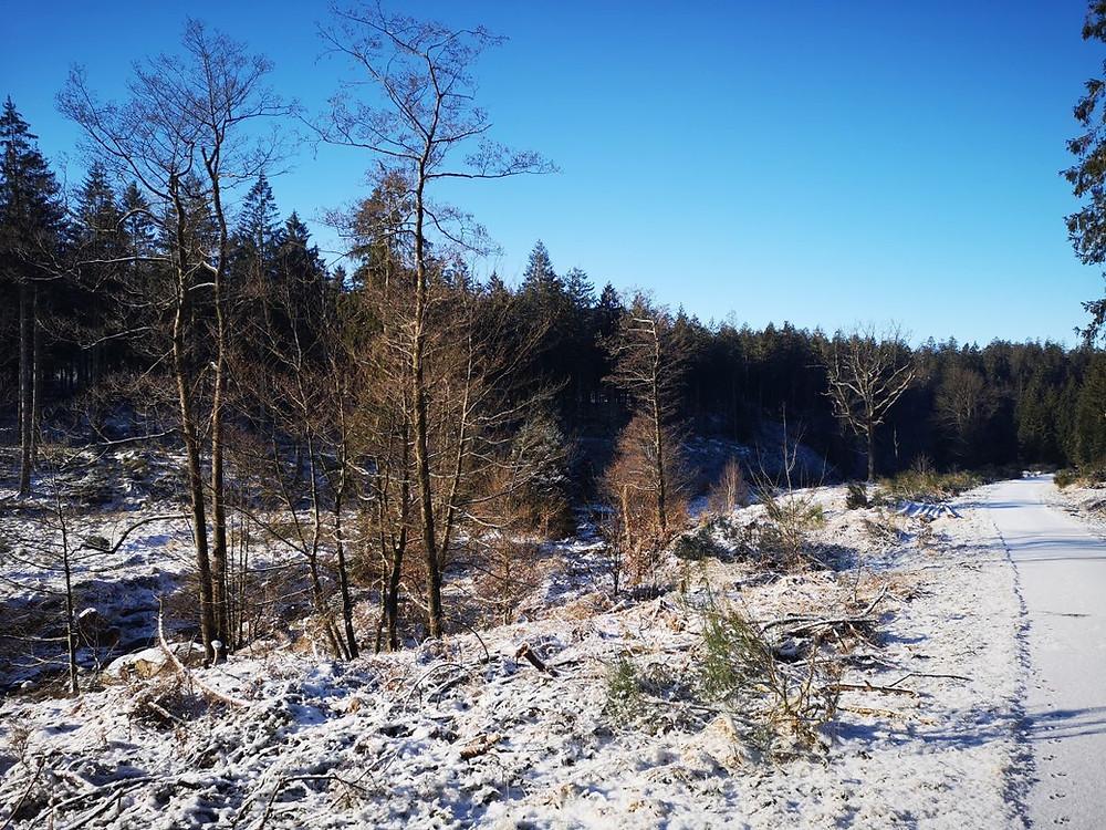 Vallei van de Soor - Hertogenwald