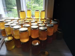 Hunajan maailmanmarkkinoita ja hunajaväärennöksiä...