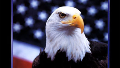 courage-eagle-and-flag.jpg