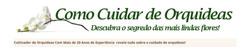 Publicidade - Curso Online