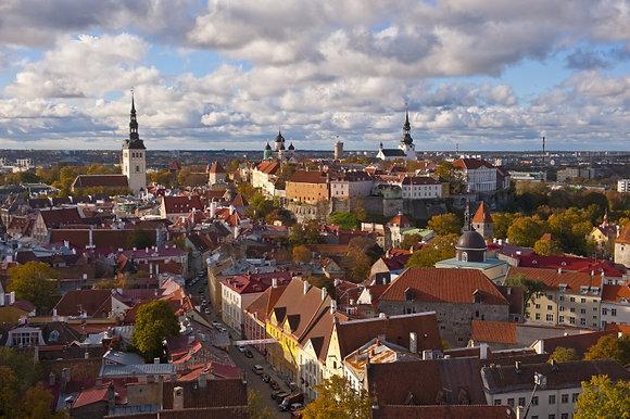 Tallinna katused 48 x 62 cm 005