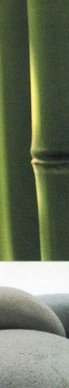 bande-bambou-small.jpg