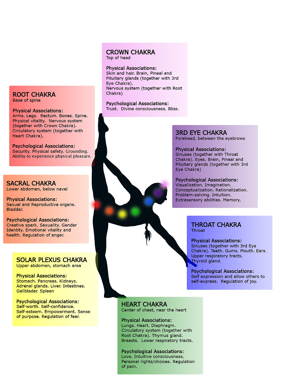 Infographic: 7 Major Chakras - physical and psychological associations