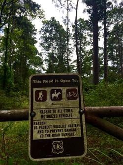 Horse Trail Sign, Sam Houston National Forest
