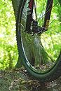 spoke tire.jpg