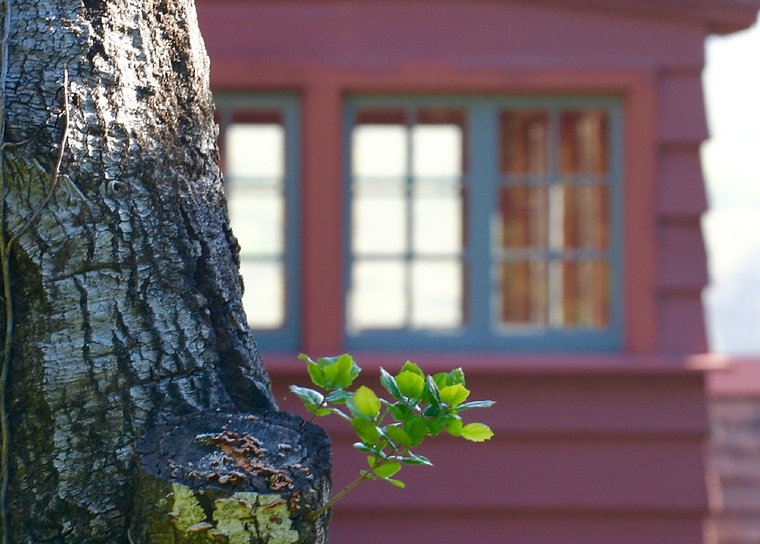 faded retreat house_edited_edited.jpg