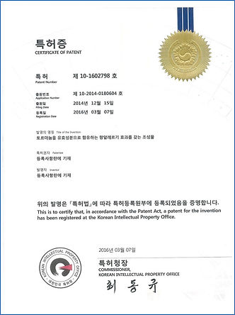 T11 certificate of patent 1.jpg