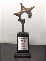 t11 award.jpg