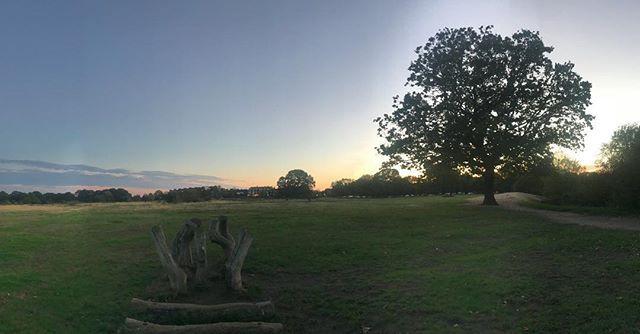 Serene moment… on one of my walks light