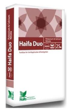 haifa duo.JPG