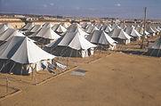 Egypt Fayid
