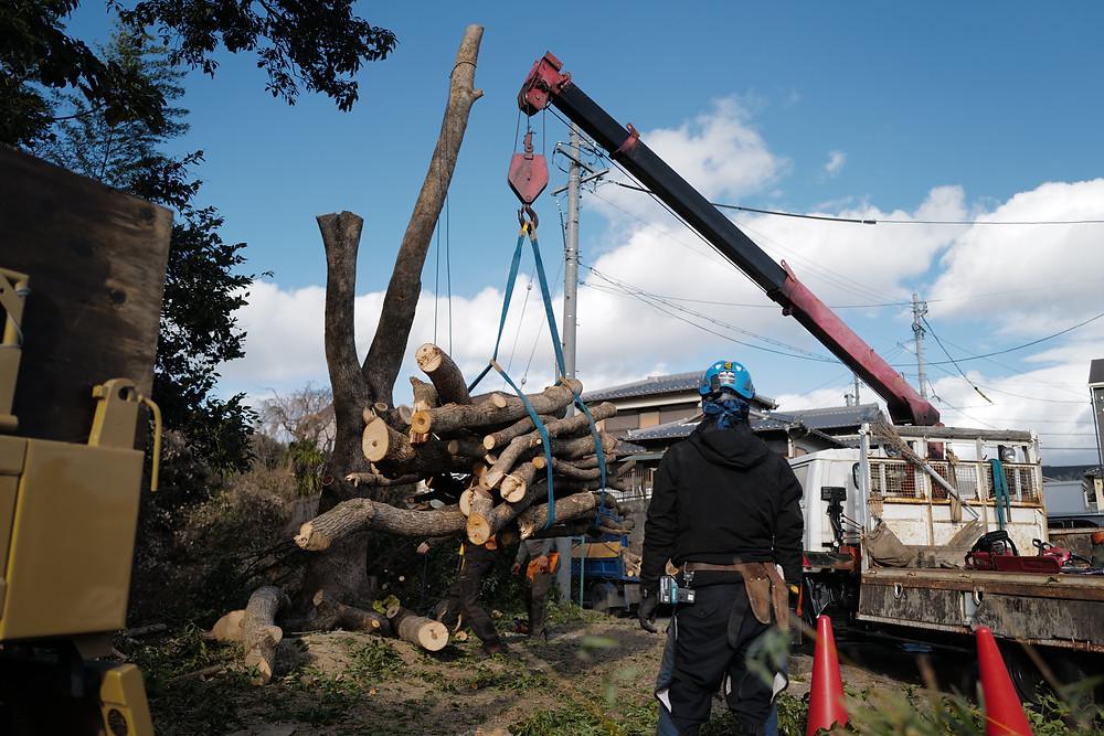 三重県の庭木の伐採作業事例|剪定伐採専門店 剪定屋空