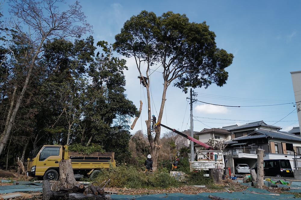 三重県剪定伐採お庭のお手入れ専門店 剪定屋空