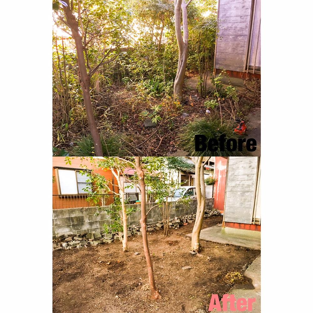 菰野町 樹木 伐採