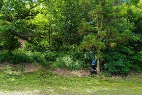 三重県 次世代に繋ぐ森林整備事業