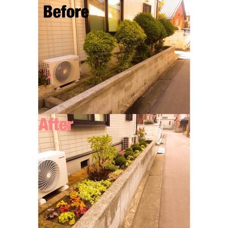 四日市市植栽|花壇に植栽作業+空スタイル