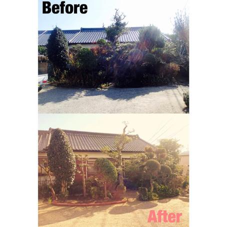 鈴鹿市 植木 剪定 庭木のお手入れ作業事例