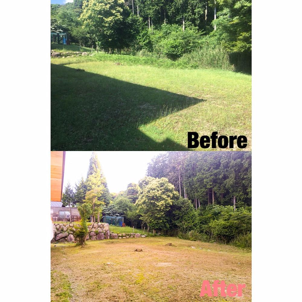 菰野町にて草刈り年間管理作業