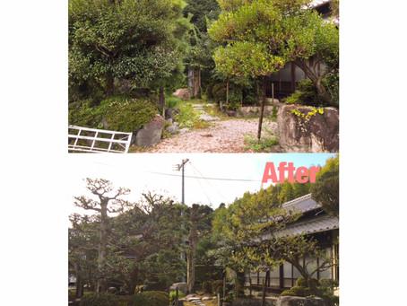 四日市庭木剪定| お庭の全体メンテナンス作業