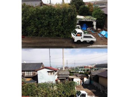 桑名市庭木伐採|桑名市で伐採の作業事例