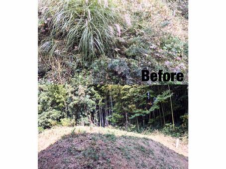桑名市にて草刈り作業