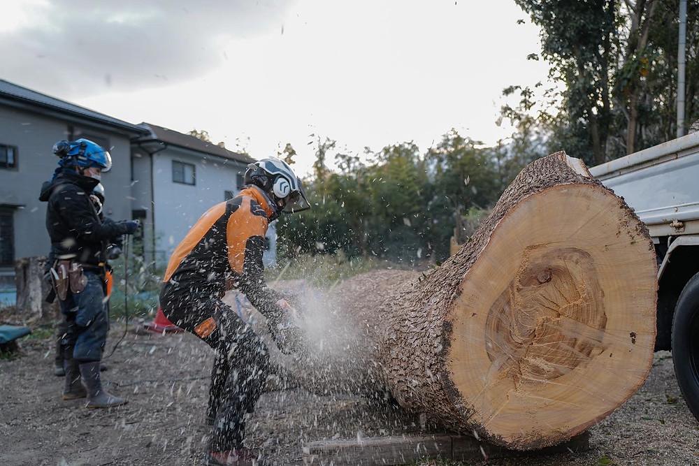 三重県特殊伐採|三重県剪定伐採お庭のお手入れ専門店 剪定屋空
