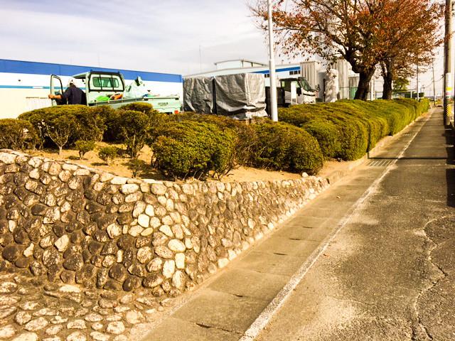 菰野町 工場緑地管理