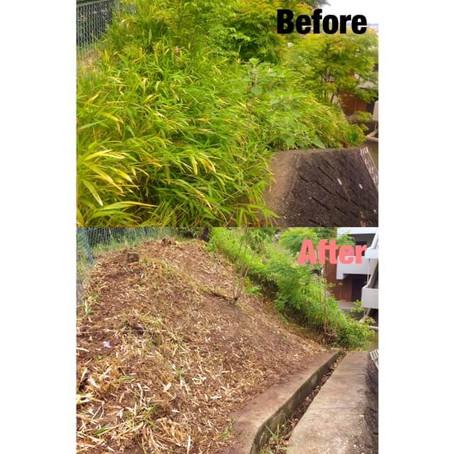 桑名市草刈り|草刈り作業最終日