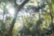 三重県 木育