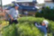 お問い合わせ|剪定屋空-sora- 三重県剪定伐採お庭のお手入れ専門店