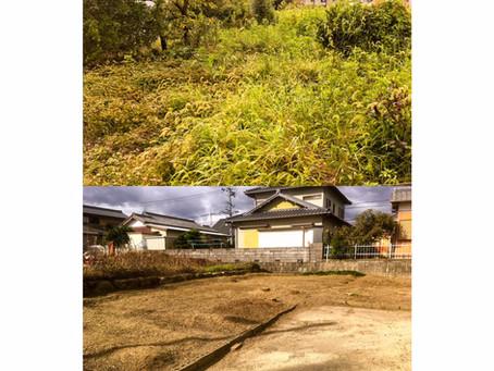 四日市伐採|お庭全体庭木伐採作業のご依頼