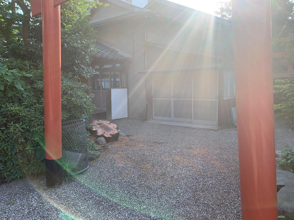 三重県四日市市にて桜の古木伐採作業|三重県剪定伐採お庭のお手入れ専門店 剪定屋空