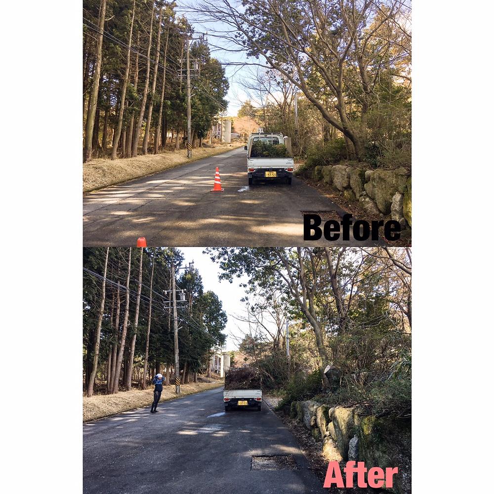 三重県菰野町樹木伐採