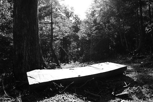 菰野町 森林保全