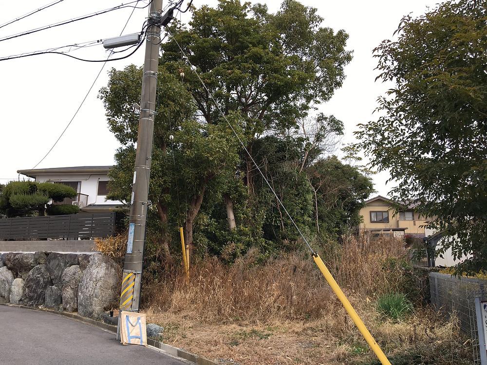 三重県鈴鹿市にて庭木の伐採作業