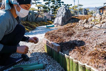 三重県 庭師.JPG