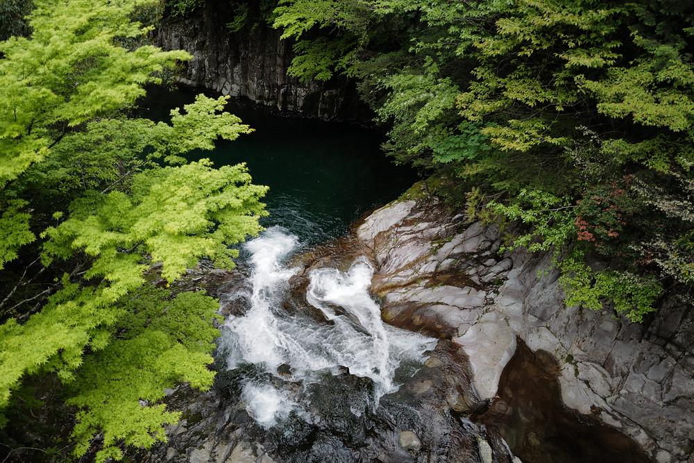 三重県森林整備